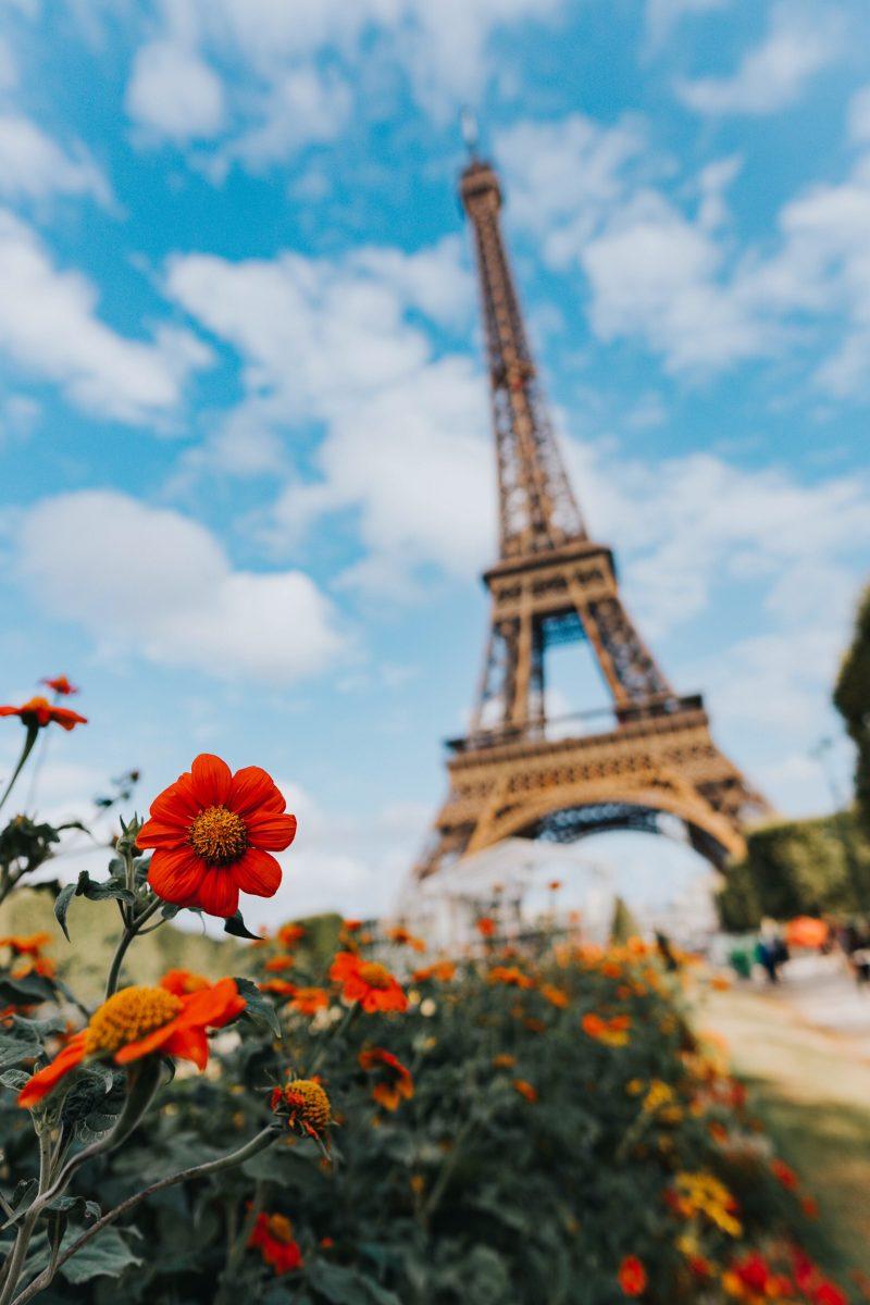 Recherche logement PMR  rdc – Secteur Paris ou secteur EST parisien