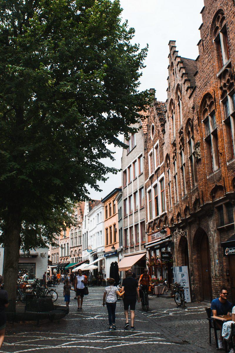 Location logements adaptés en Belgique